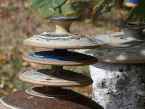 Lids with no place to rest on arbor vitae stumps.